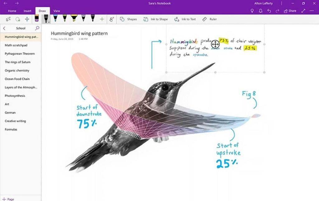 Screenshot von OneNote für Windows 10 / der OneNote UWP