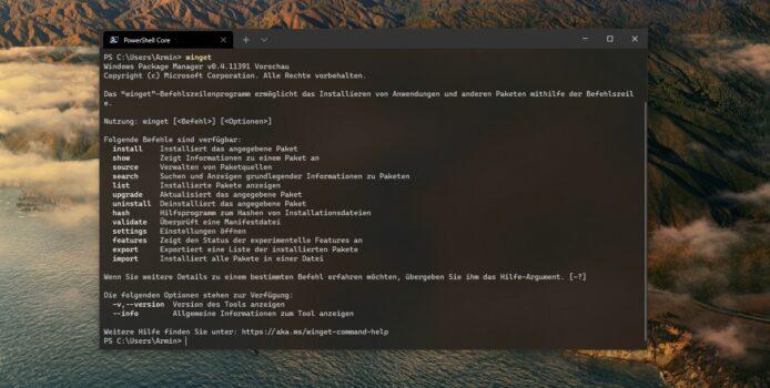 Windows Package Manager 1.0 ist erschienen: ein besserer Store