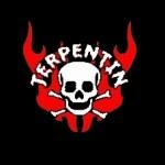 Mr.Terpentin