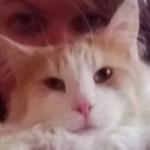 Profilbild von sigipinkypups