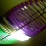Profilbild von Snaps